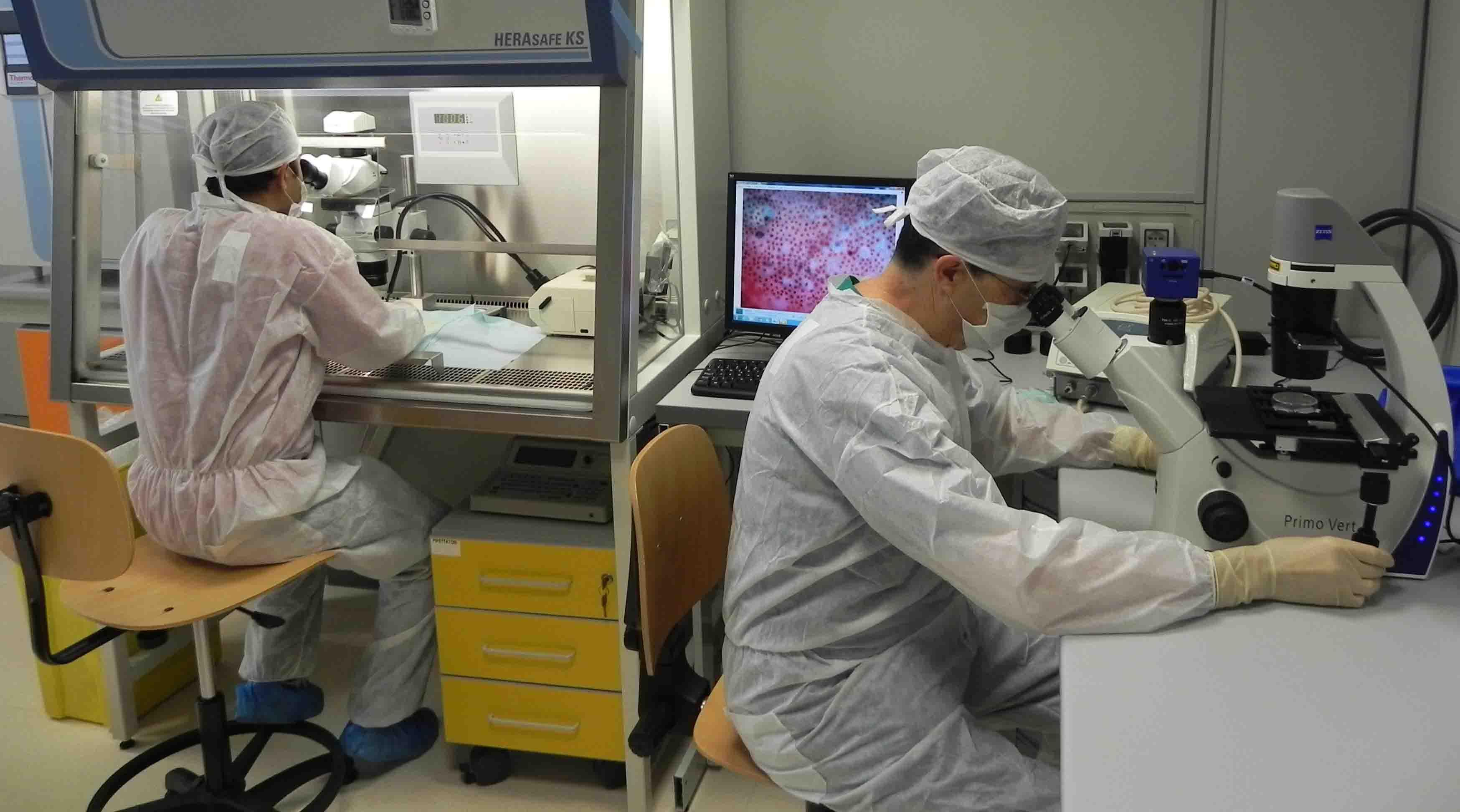 Endotelio corneale, uno studio di Fondazione Banca degli Occhi tra i top 10